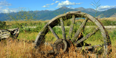 Wooden wheel lying in the grass on a clear sunny day